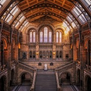 Natural History Museum | London, UK