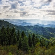 Blick vom Schliffkopf, Baiersbronn | BW, Deutschland