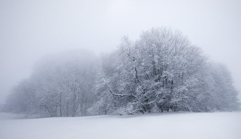 Fog and Snow | Raichberg, Albstadt, BW, Deutschland