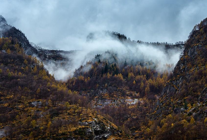 Yellow Fall | Valle Verzasca, Tessin, Schweiz